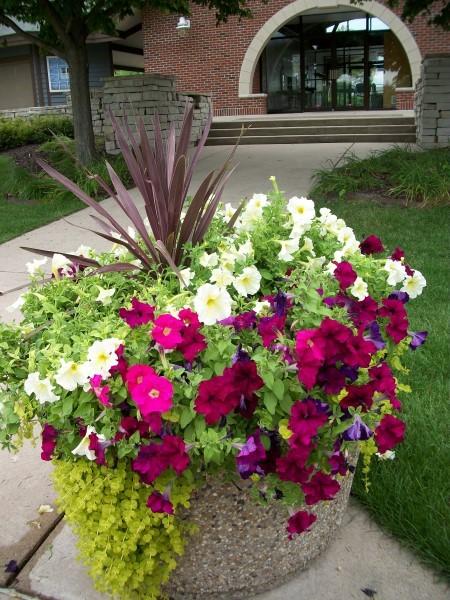 Friends of Riverfront Bloomin Bunch Beloit Wisconsin (Custom)